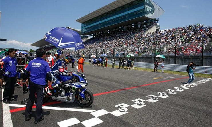 The starting grid for the Suzuka 8 hour race 2016