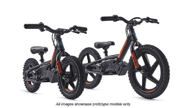Harley Davidson Electric Childs Bike