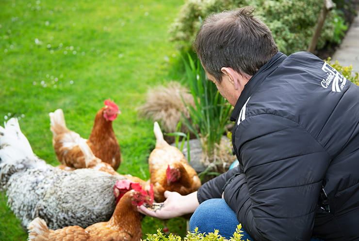JOHN-McGUINNESS-AND-HIS-CHICKENS