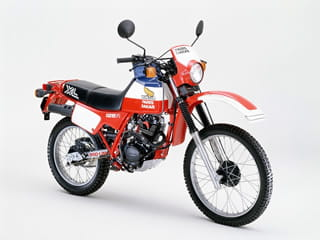 It may be a tiddler bu the 1983 Honda XL125R Paris-Dakar replica sure looked cool