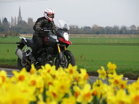 Suzuki's V-Strom 1000 on UK roads. It makes a lot of sense. Note: No daffodils were harmed in the making of this photo.